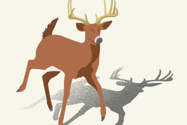 131212-UTAG-hands_on_illustration_trophybuck